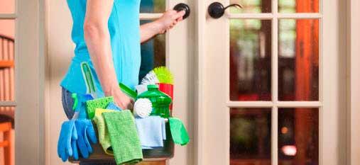 Verde eco friendly per la pulizia della casa for Pulizia della casa